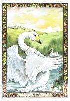 kelta tarot kártya horoszkóp mérleg
