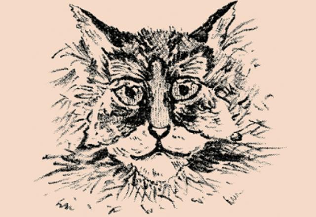 személyiség teszt macska rajz