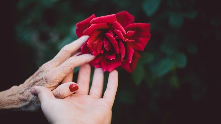 menopauza változókor klimax
