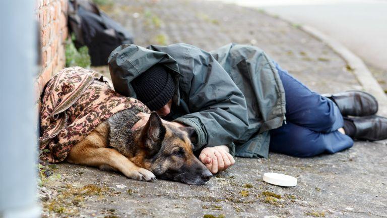 hajléktalan, tél, segítség