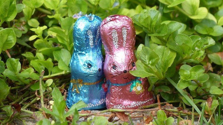 csokinyúl húsvét édesség