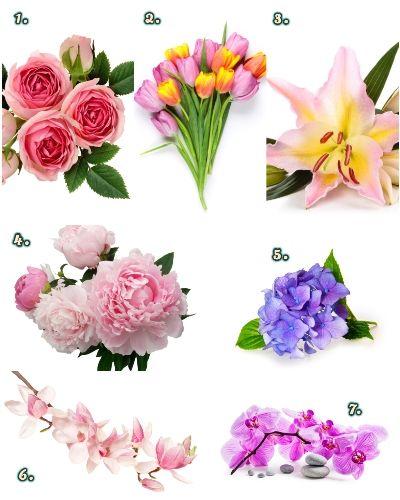 kedvenc virág személyiség teszt