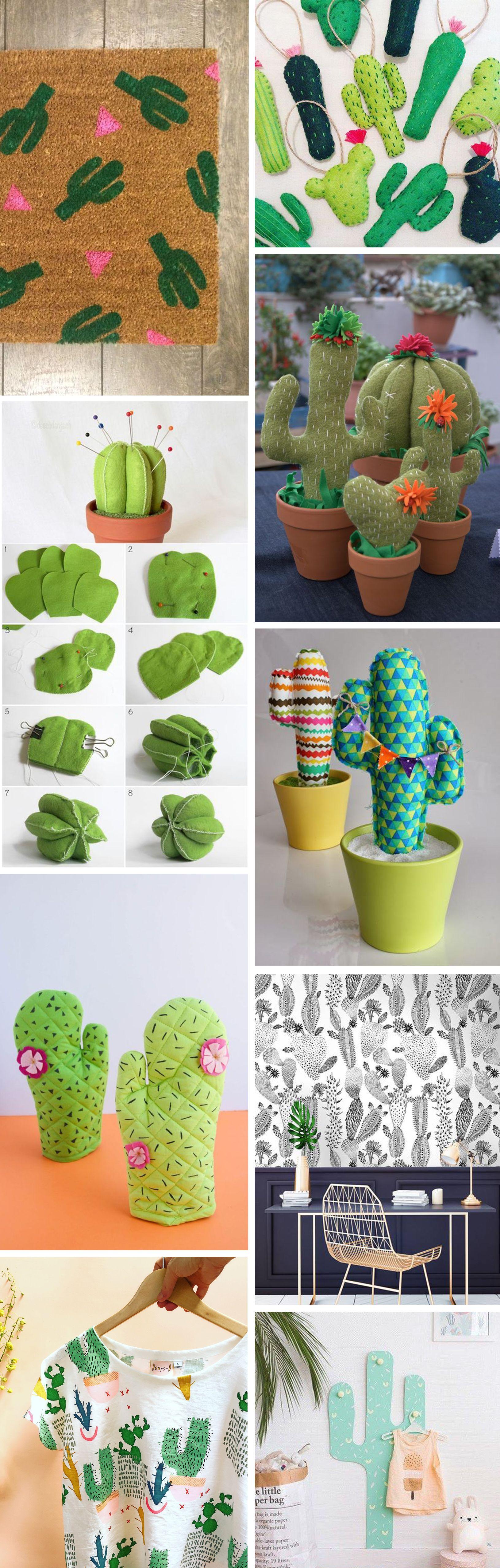 kaktusz, dekoracio, otthon