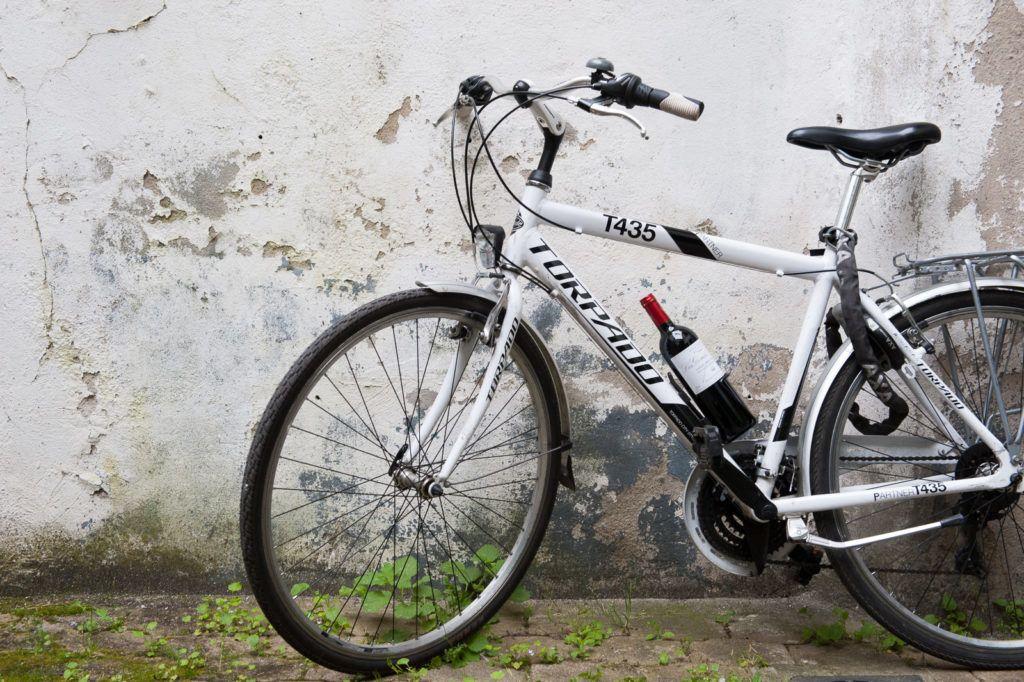 bicikli bor utazás