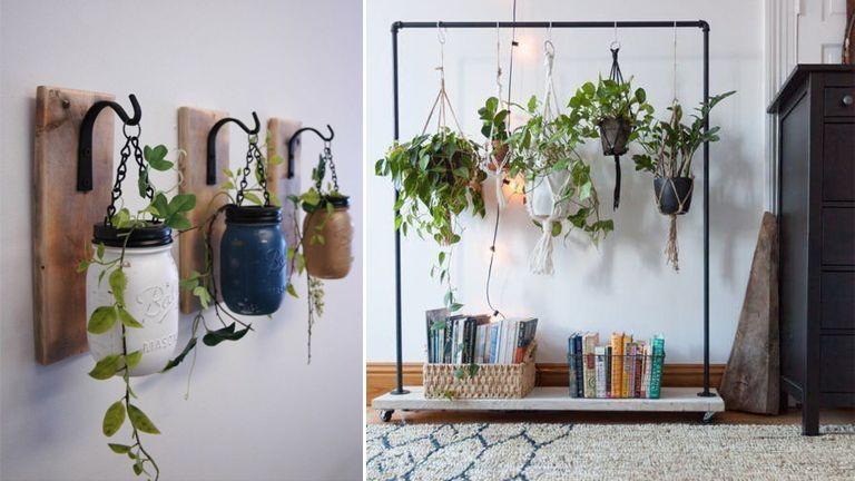 lakás dekor lakberendezés szobanövény