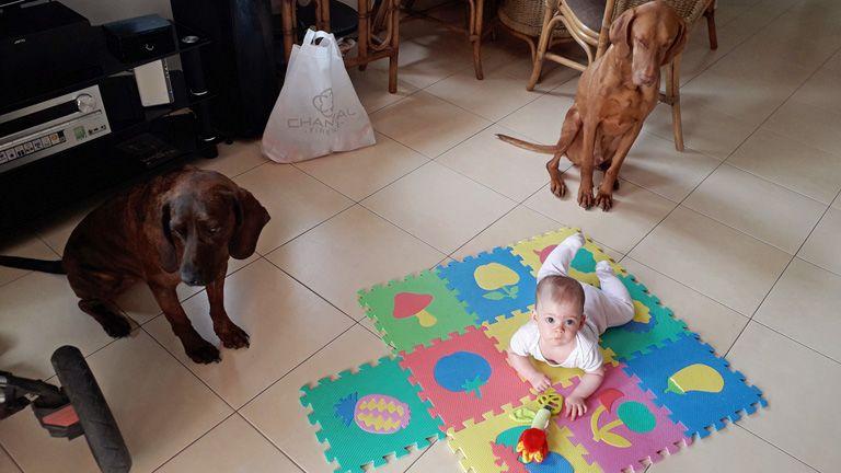 kutyatartás gyerekkel baba újszülött kutya