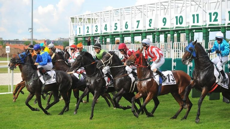 lóverseny (forrás: Kincsem Nemzeti Kft.)