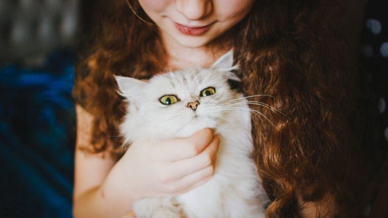 cica család gyerek