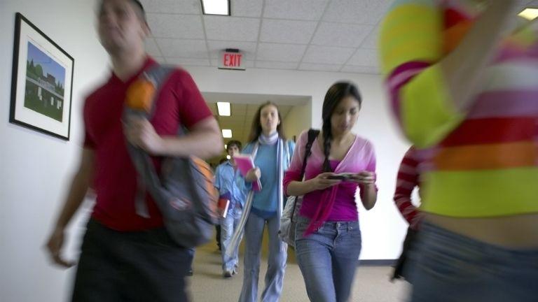 diák, iskola, tantárgy, egészségügy