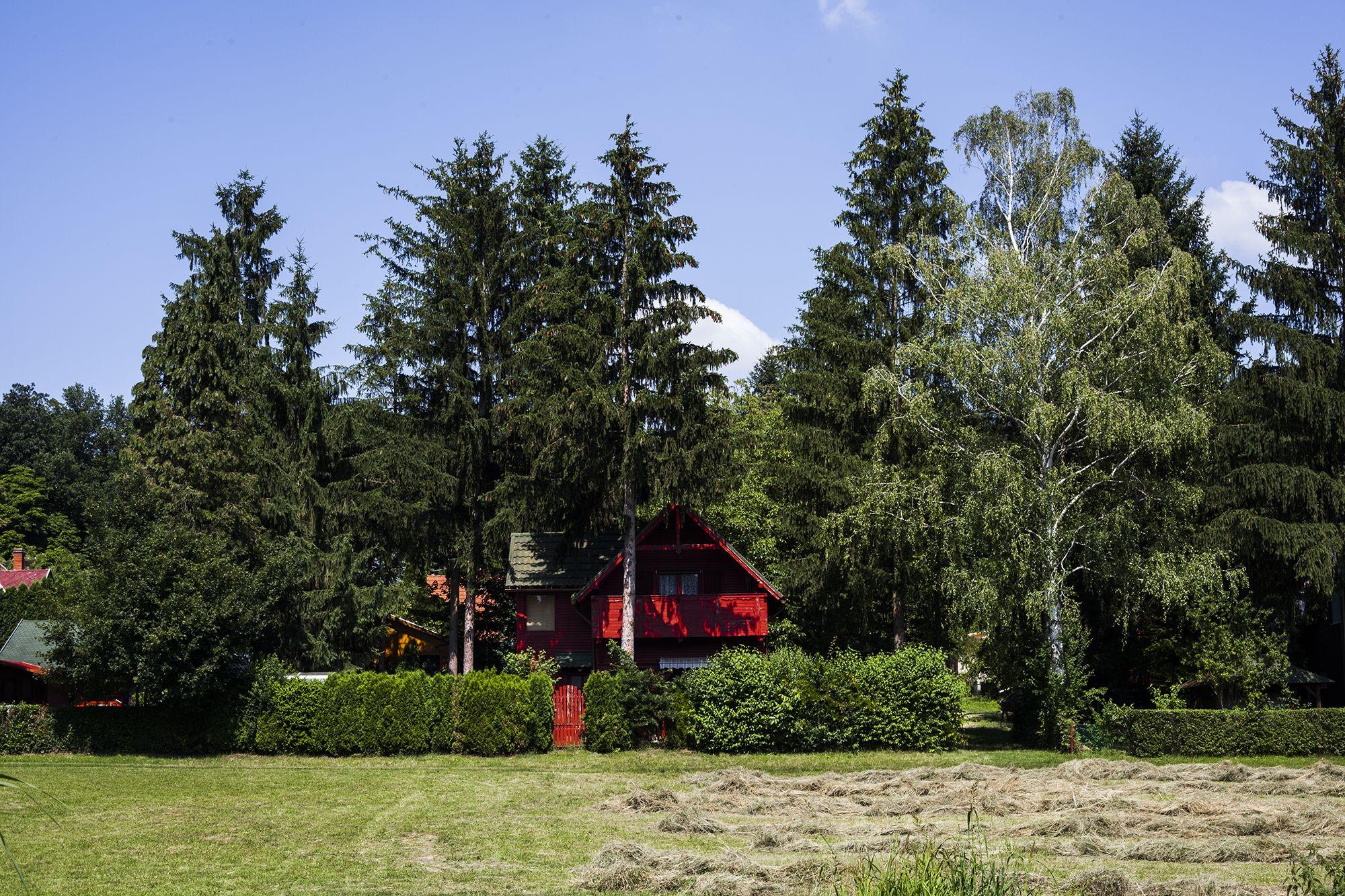 Szajki-tavak - Fotó: Czvitkovits Judit