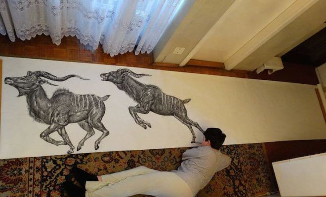 Elképesztően élethű állatokat rajzol a 15 éves csodagyerek