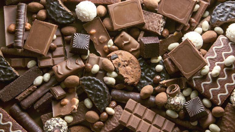 csoki, csokoládé, csoki világnap