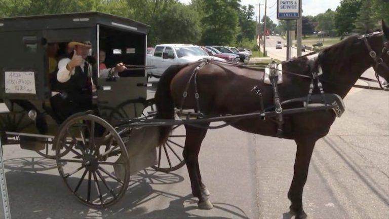 Ingyen szex pornó videók. Legjobb HD 75% 28:02 2874 Amish barátnő szerti a dákót.