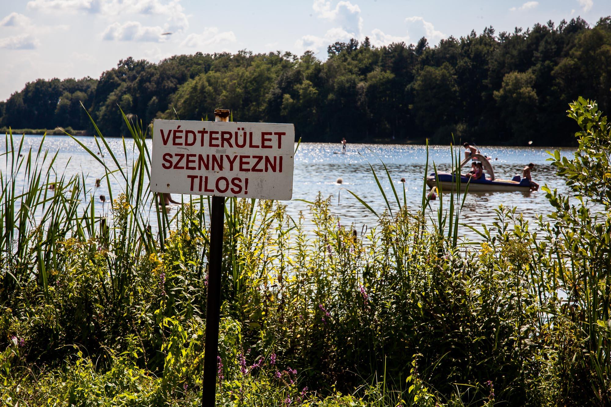 Borostyán-tó: az ország egyik legszebb kutyabarát strandja