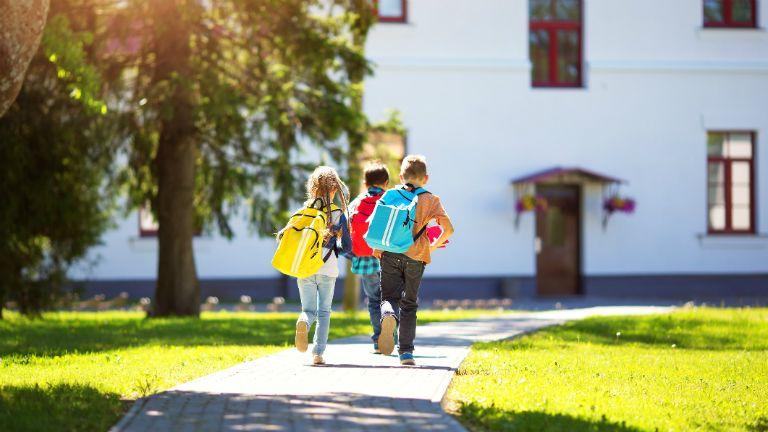 iskola, aldi, gyerek, jótékonyság, környezetbarát