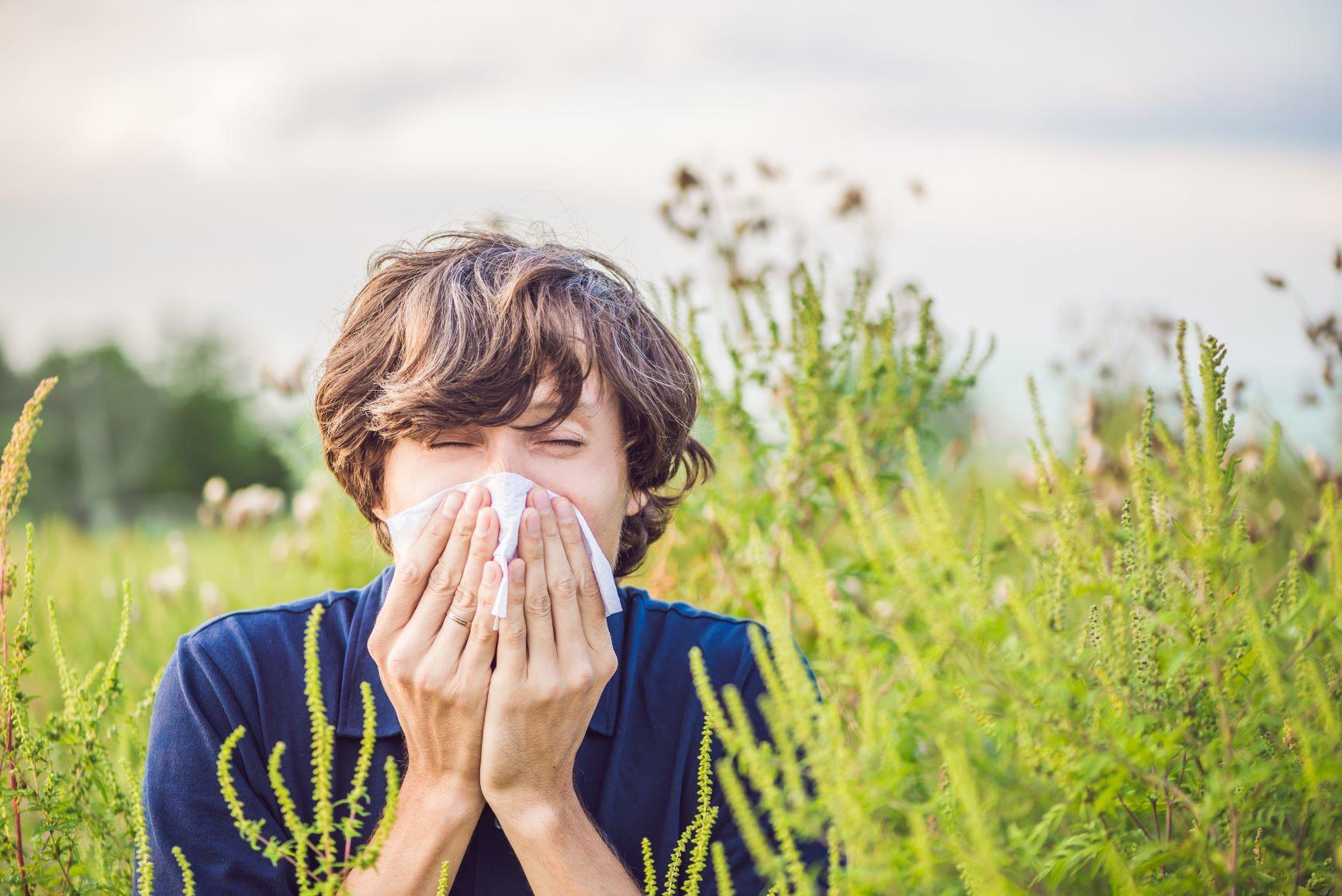 allergia, tippek