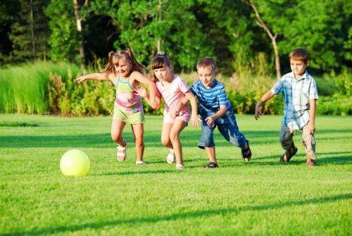 Gyerekek és a kerti veszélyforrások - Parkok és díszkertek - Díszkert