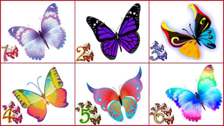 pillangók személyiség teszt