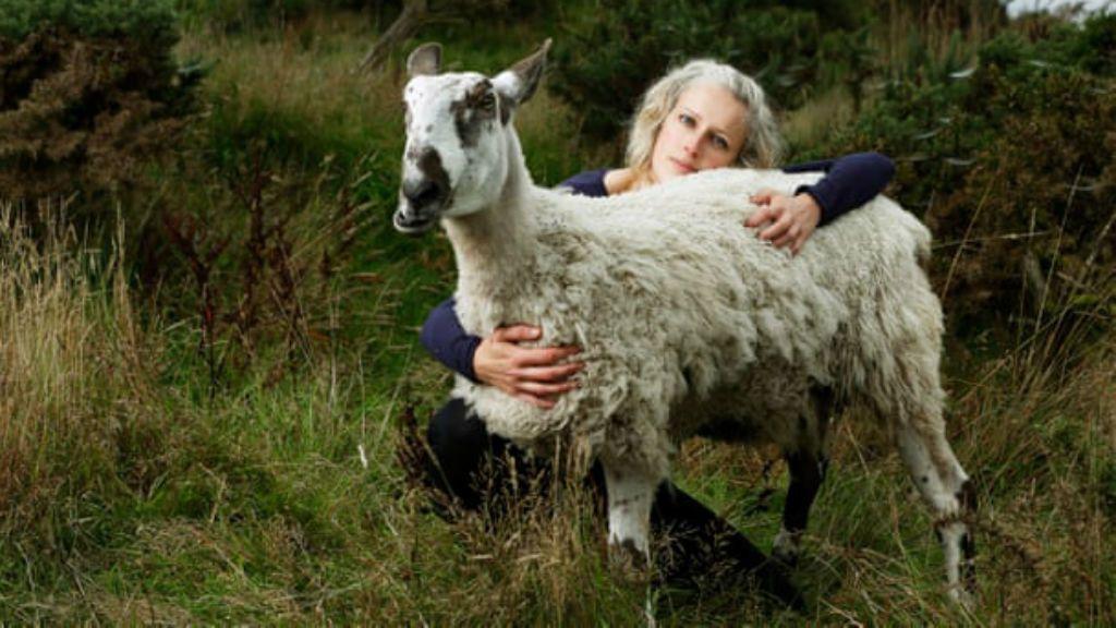 alexis hospice állat gondoskodás szeretet