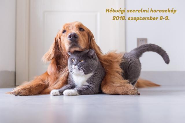 hétvégi szerelmi horoszkóp 2018. szeptember 8-9.