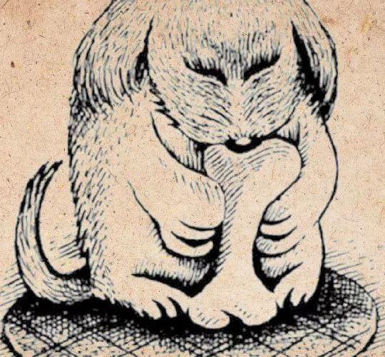 állatteszt személyiség teszt kutya