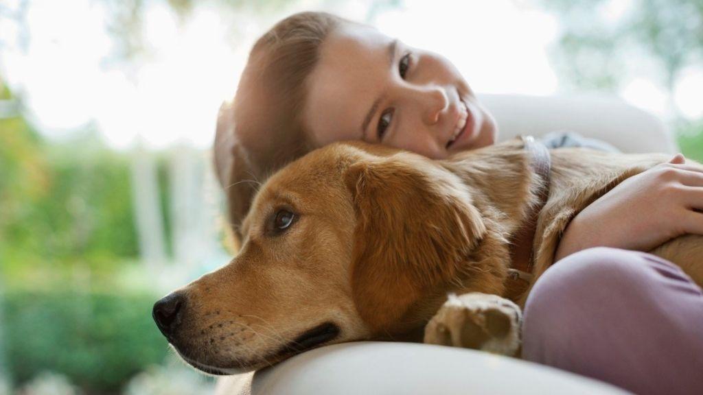 kutya tini állatartás