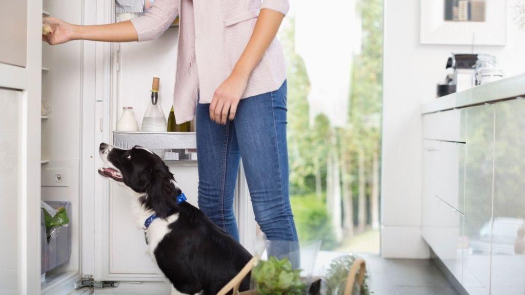 hűtő rendszerezés tippek