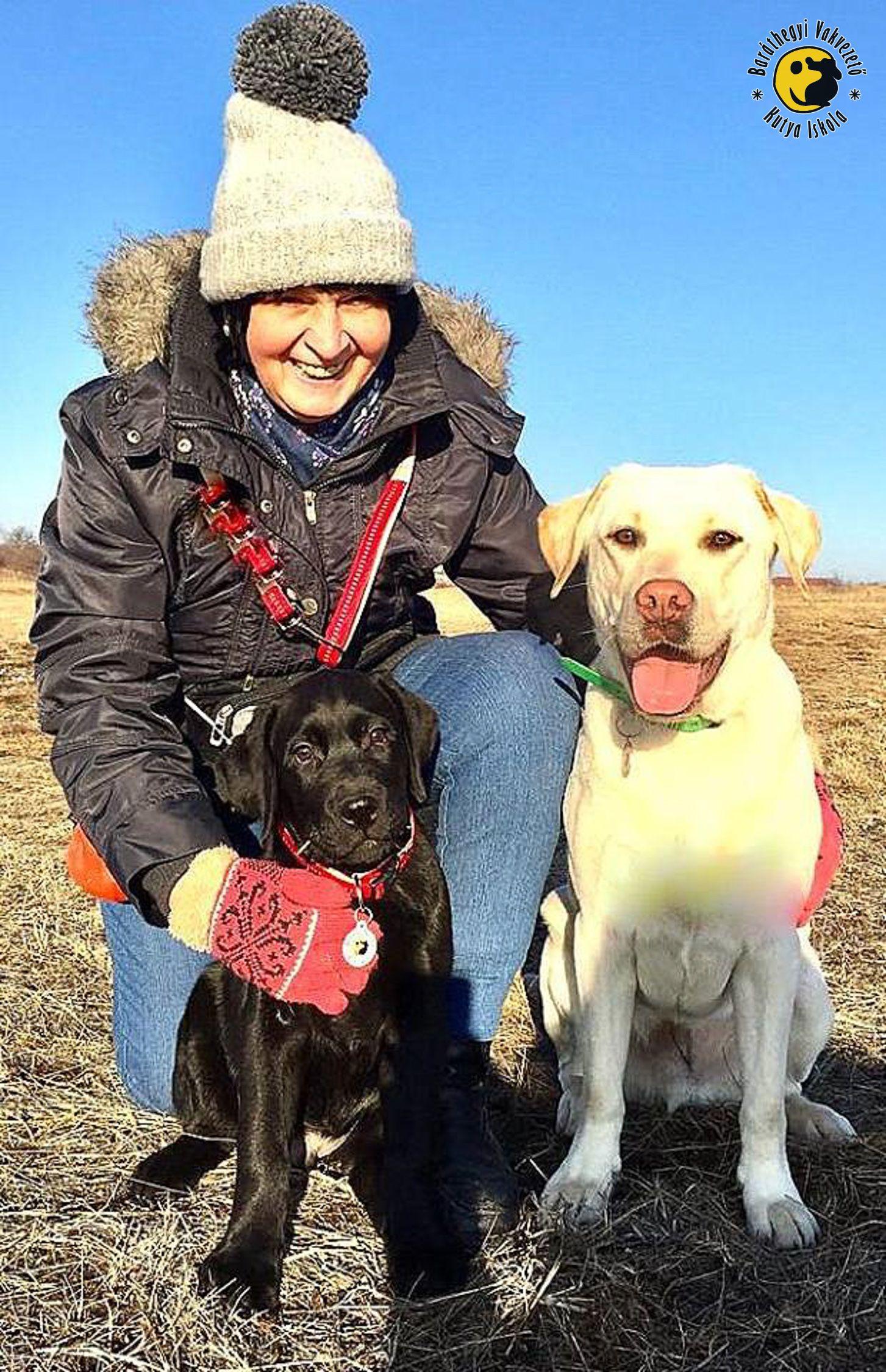 baráthegyi vakvezető kutya iskola, vakvezető kutya, kölyöknevelés