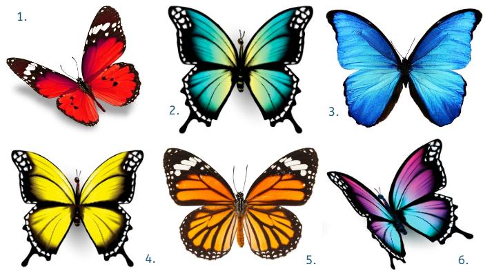 pillangók személyiségteszt