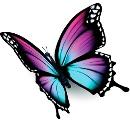 pillangó személyiségteszt érzékenység