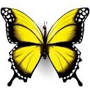 pillangók személyiségteszt lelkes, optimista