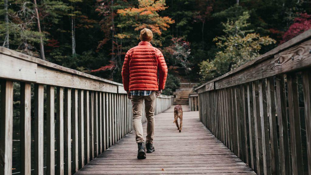 kutyasétáltatás gazdi gazdiképző