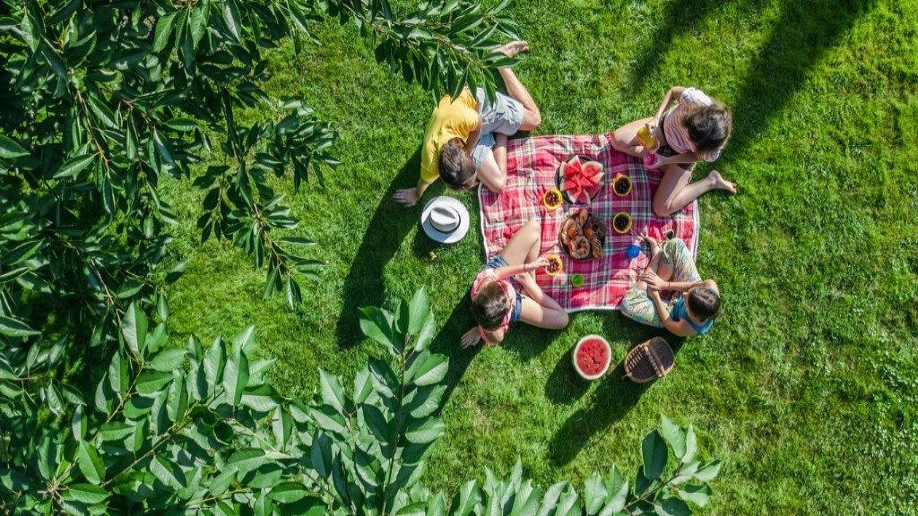 Piknik: a szuper családi program