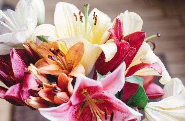 virágok jóslat virágnyelv liliom