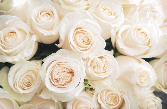 virágok jóslat virágnyelv