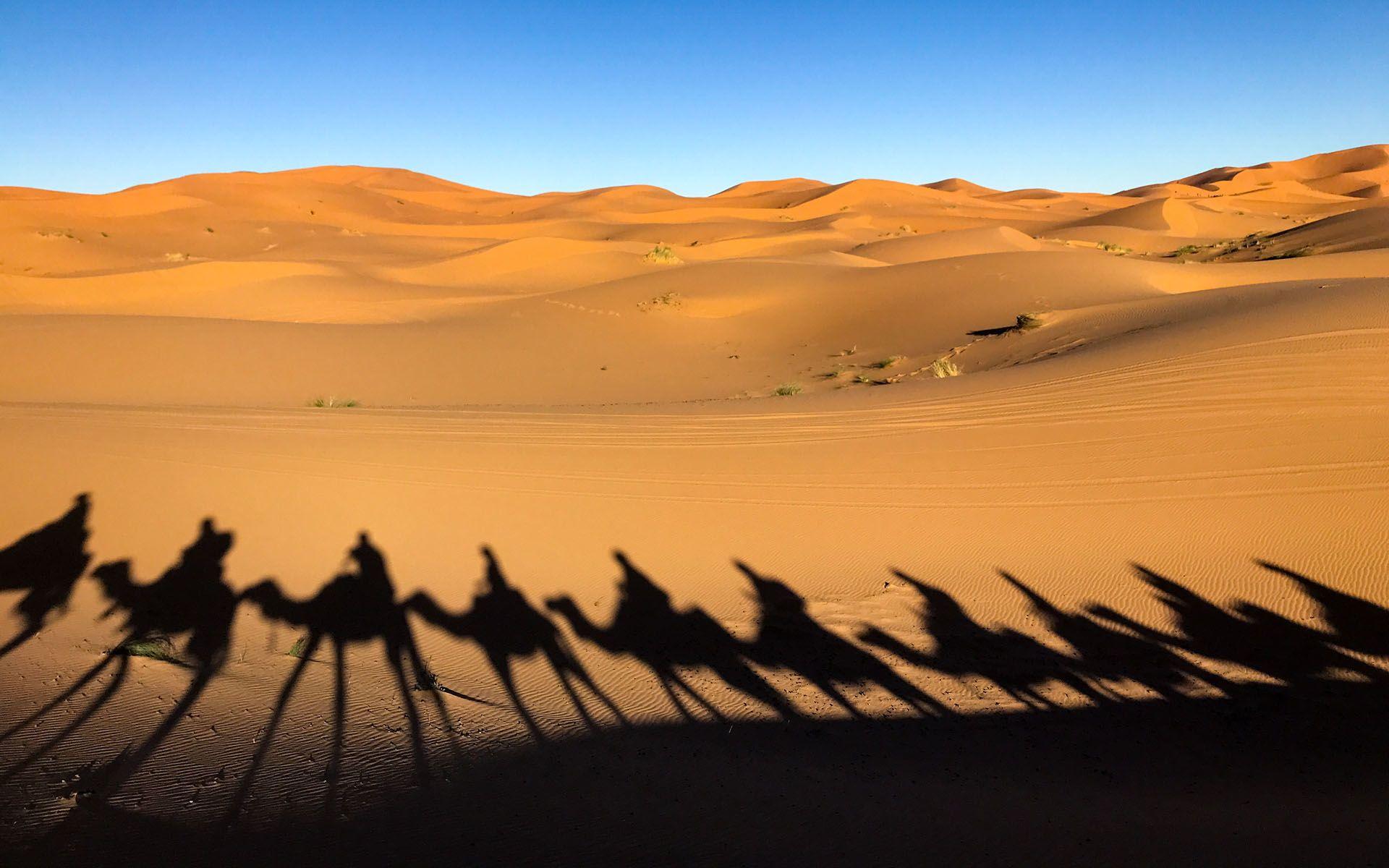 meleg szex sivatagban ingyenes fekete punci felvételek