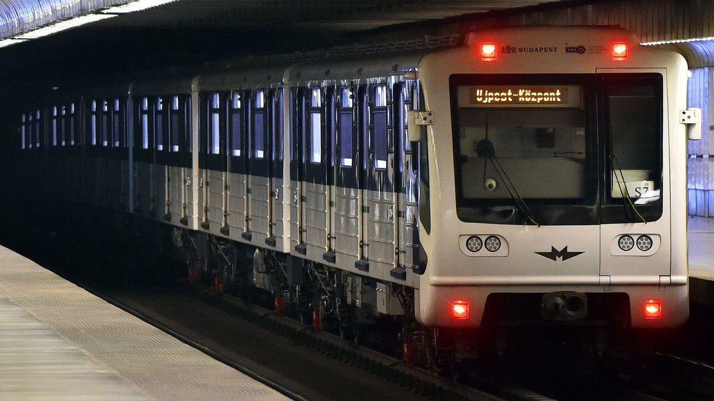 metro, kisallat