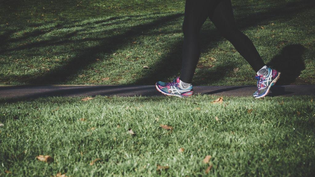edzés mozgás tanulmány