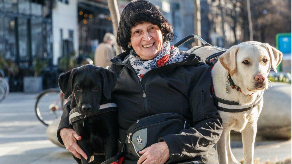 vakvezető kutya kölyöknevelés kutya
