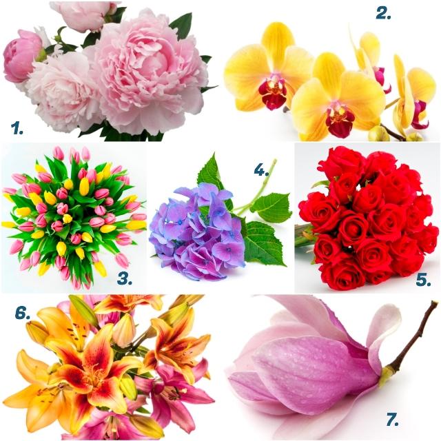 kedvenc virágok személyiség teszt