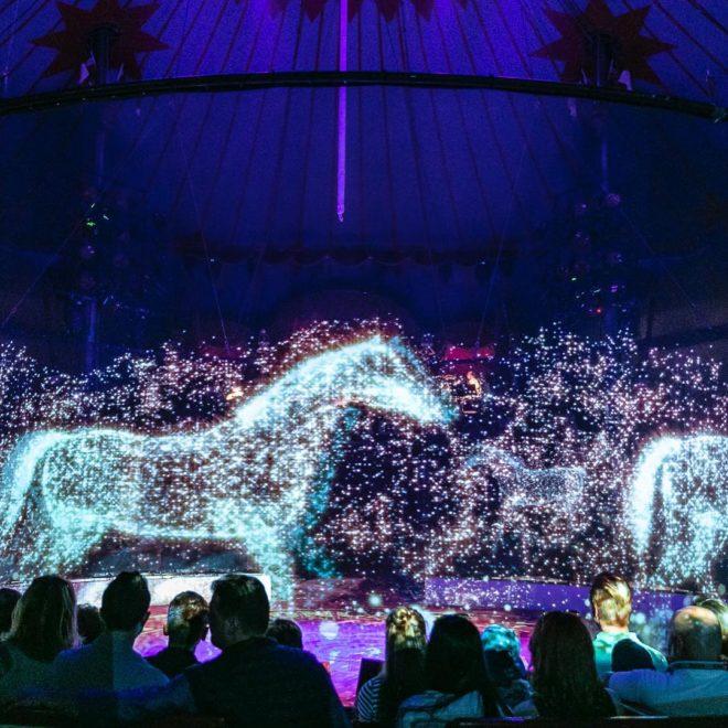 hologram állatok roncalli cirkusz