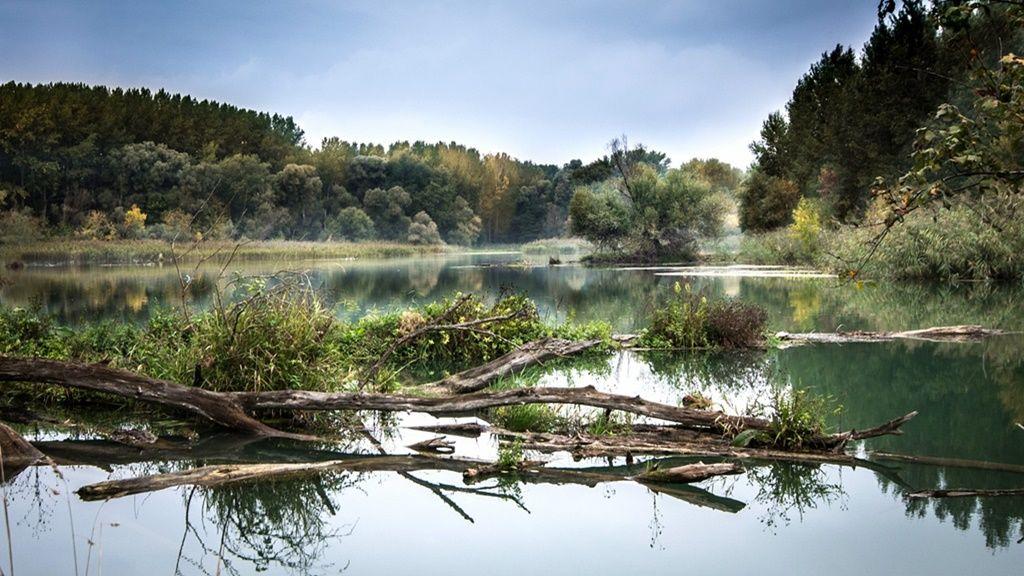 A Duna Szlovákiában (Fotó: Image by Lubos Houska from Pixabay)