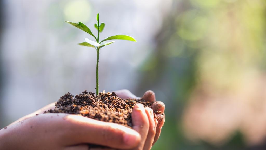 környezetvédelem gyereknevelés szülők