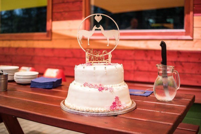samu saci lámaesküvő torta