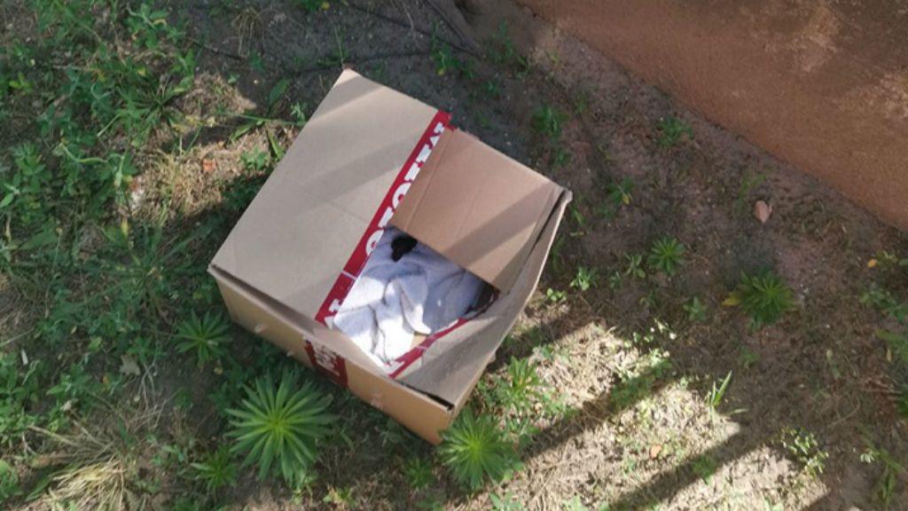 kirakott kismacska doboz újpest