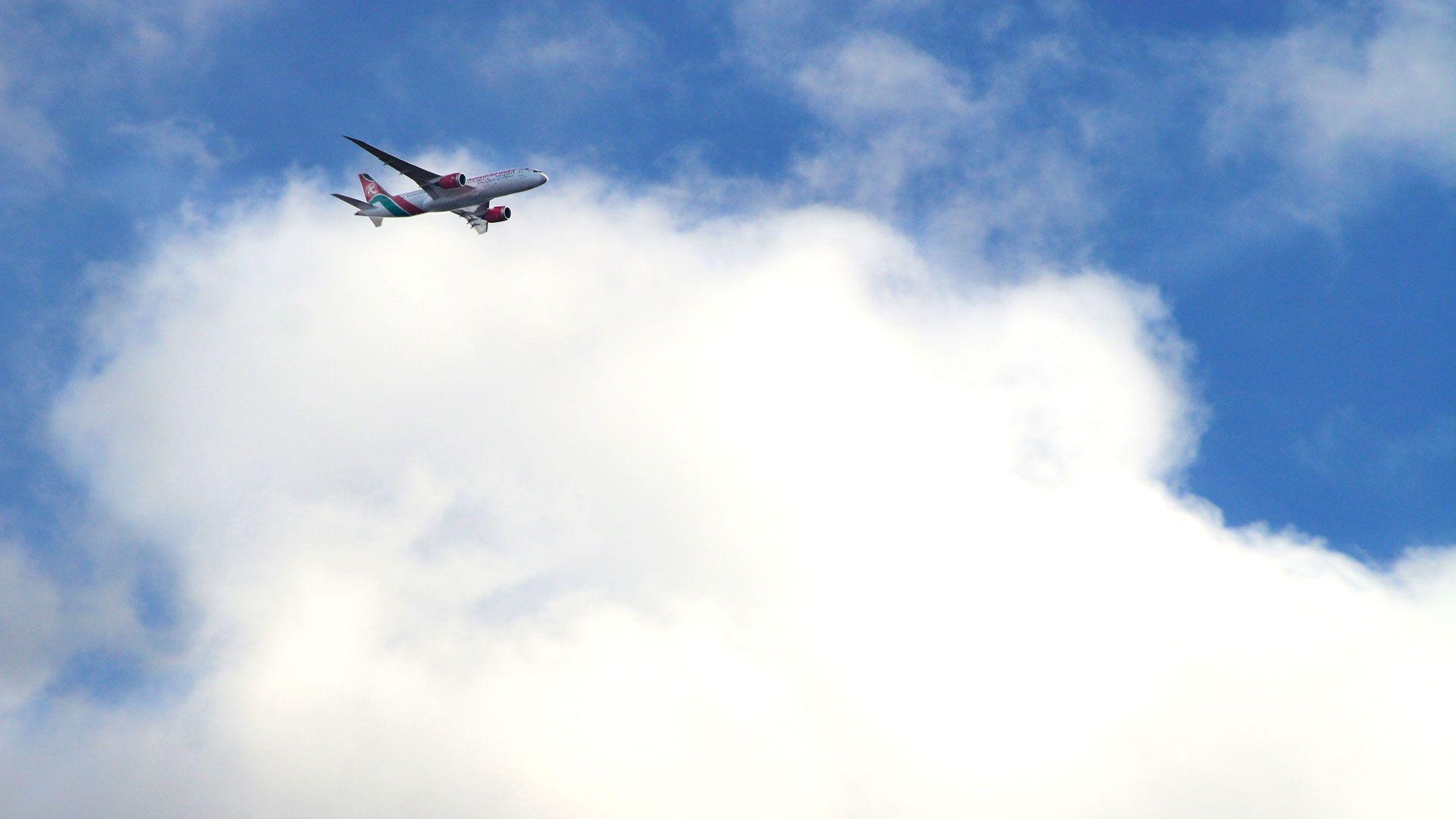 Karfiol repülővel érkezett haza (Fotó: Getty Images)