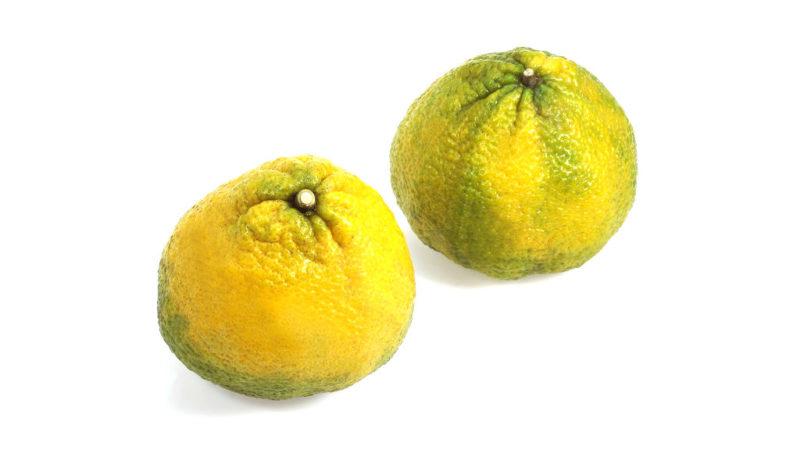 csúnya gyümölcs