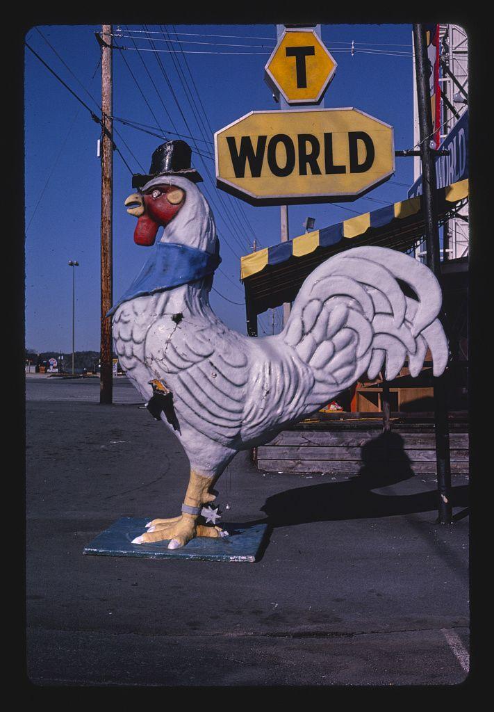 Kakasszobor a Shirt World mellett, Route 441, Pigeon Forge, Tennessee, 1984