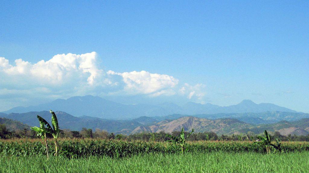 Mount Wilis Indonézia