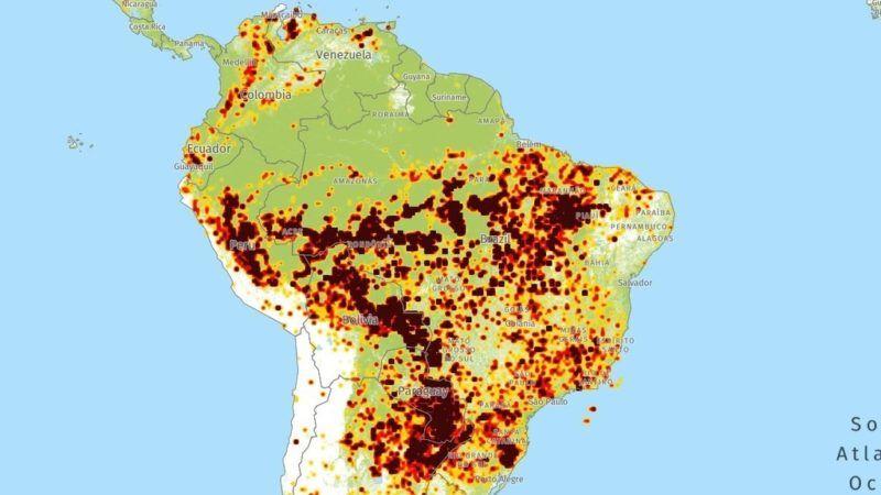 Szinte Eloben Kovetheto Az Amazonas Pusztulasa Nlc